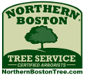 Northern Boston Tree Service | The Tree Pruning Experts